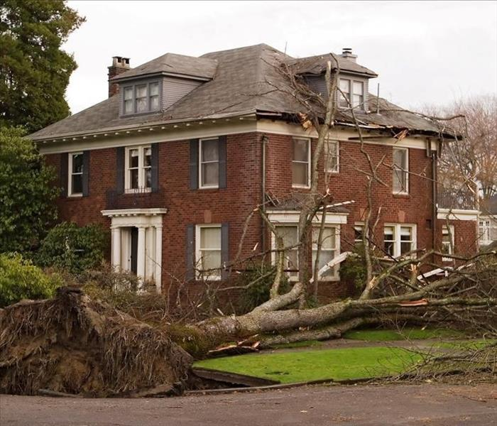 Large uprooted tree laying on ground with branches creating roof damage to red brick house