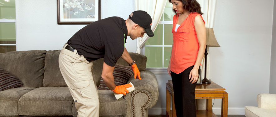 Marlton, MD carpet upholstery cleaning