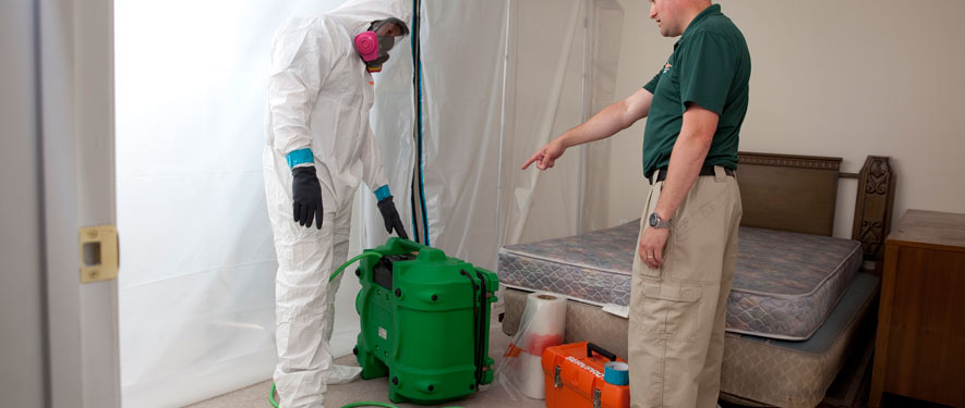 Marlton, MD mold removal process